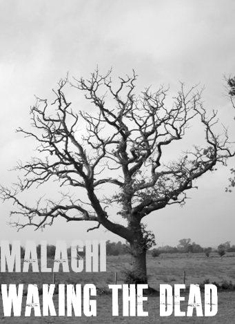 Malachi Logo