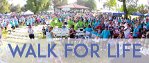 Walk for Life – THIS Saturday!
