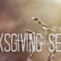 Thanksgiving Service THIS Sunday!
