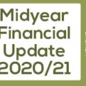 Midyear Financial Update